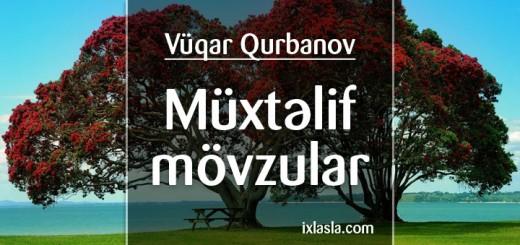 vuqar-qurbanov-muxtelif